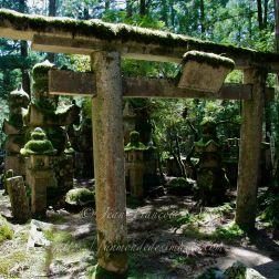 Ancien Torii de pierre et lanternes couvertes de mousses au cimetière Okuno-In.