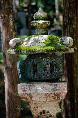 Lanternes anciennes couvertes de mousses