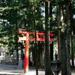 KOYASAN Okuno-in cimetière Tori-182