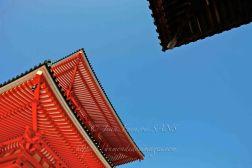 KOYASAN temple détails-178