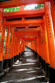 KYO Fushimi Inari Taisha shrine enfilade de toriis
