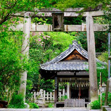Sanctuaire aux abords du chemin de la philosophie à Kyoto.