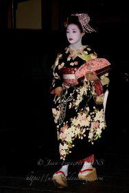 Maiko dans le quartier de Gion