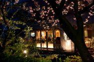 04-KYO soir de printemps