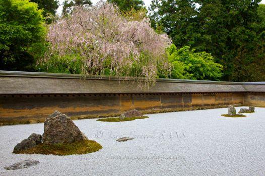 Kyoto, Ryoanji Temple