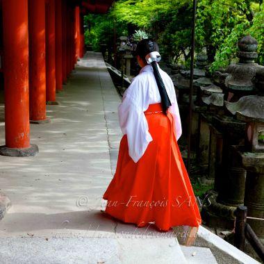 NARA femme glycine en chemin vers le sanctuaire Kasuga Taisha