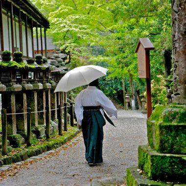 Moniale dans les allées du sanctuaire Kasuga Taisha à Nara