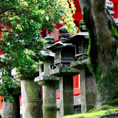 Alignement de lanternes de pierre et temple de bois rouge au sanstuaire Kasuga Taisha.