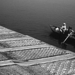 Varanasi - saris de soie séchant sur les ghats